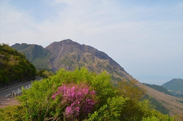 雲仙岳とミヤマキリシマ
